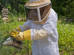 Choosing a Beekeeping Suit